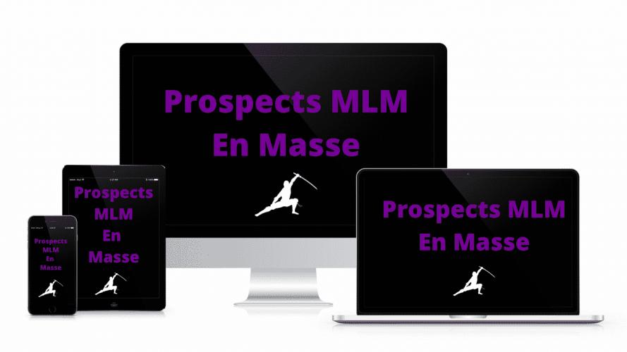 Bloguer Pour Prospecter en MLM(2)
