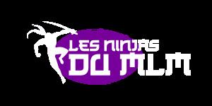 Logo Les Ninjas du MLM_v1